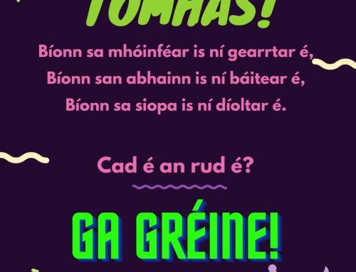 Tomhas!